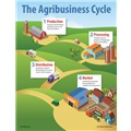 The Agribusiness Cycle