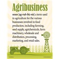 Definition of Agribusiness