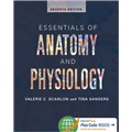 Essentials of Anatomy and Physiology (Florida)